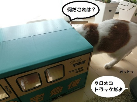 024 - コピー.JPG